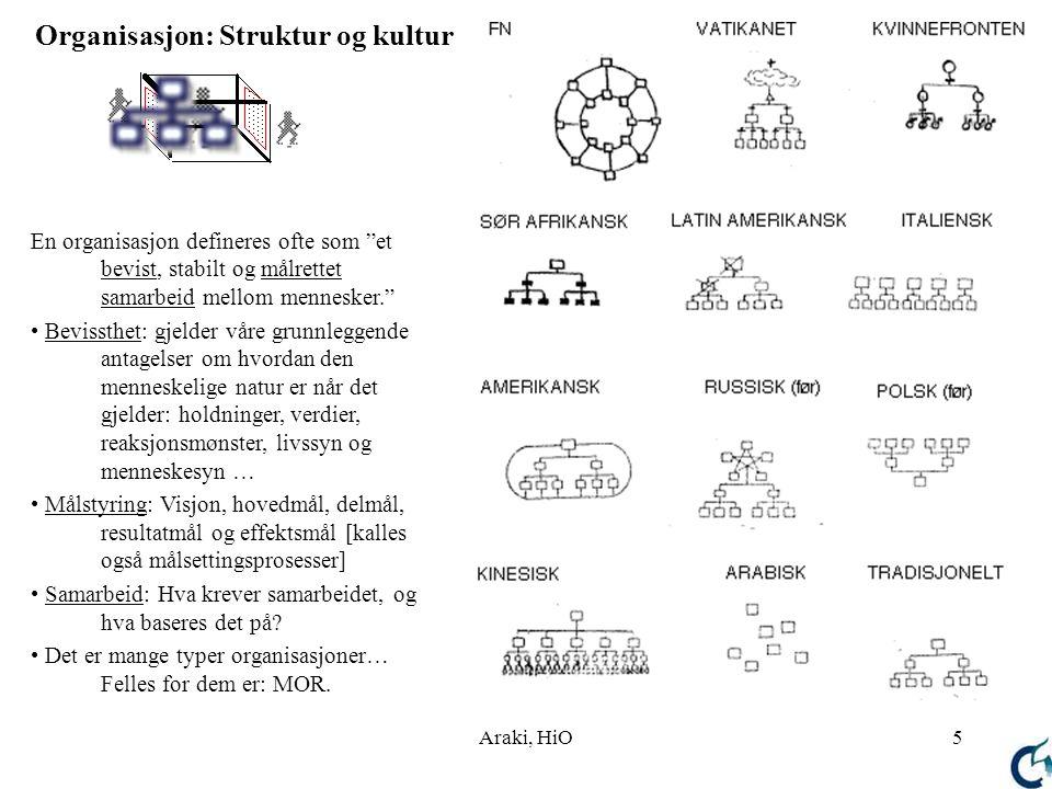 Organisasjon: Struktur og kultur