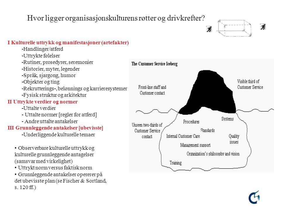 Hvor ligger organisasjonskulturens røtter og drivkrefter