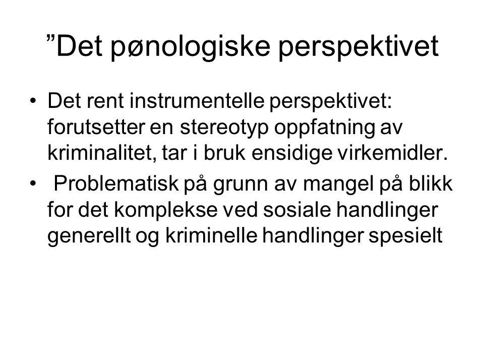Det pønologiske perspektivet
