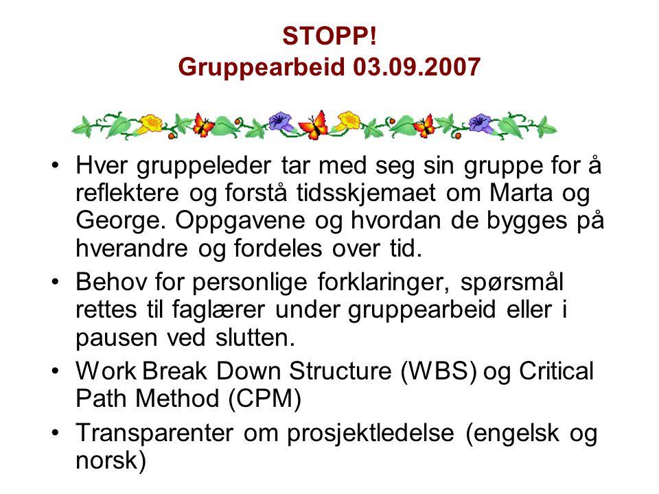 STOPP! Gruppearbeid 03.09.2007