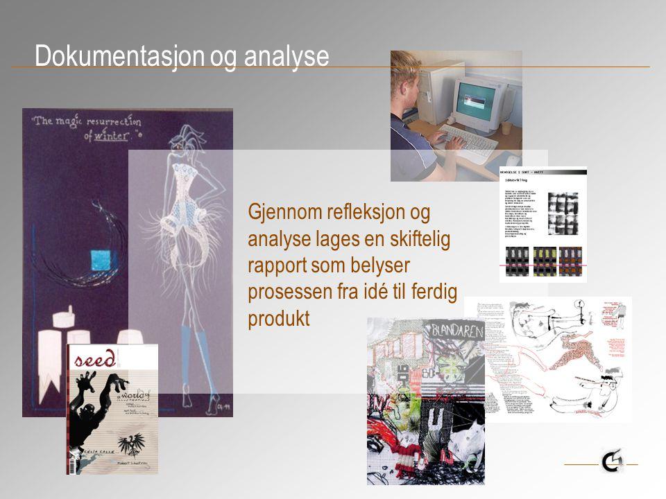 Dokumentasjon og analyse