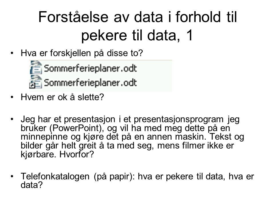 Forståelse av data i forhold til pekere til data, 1