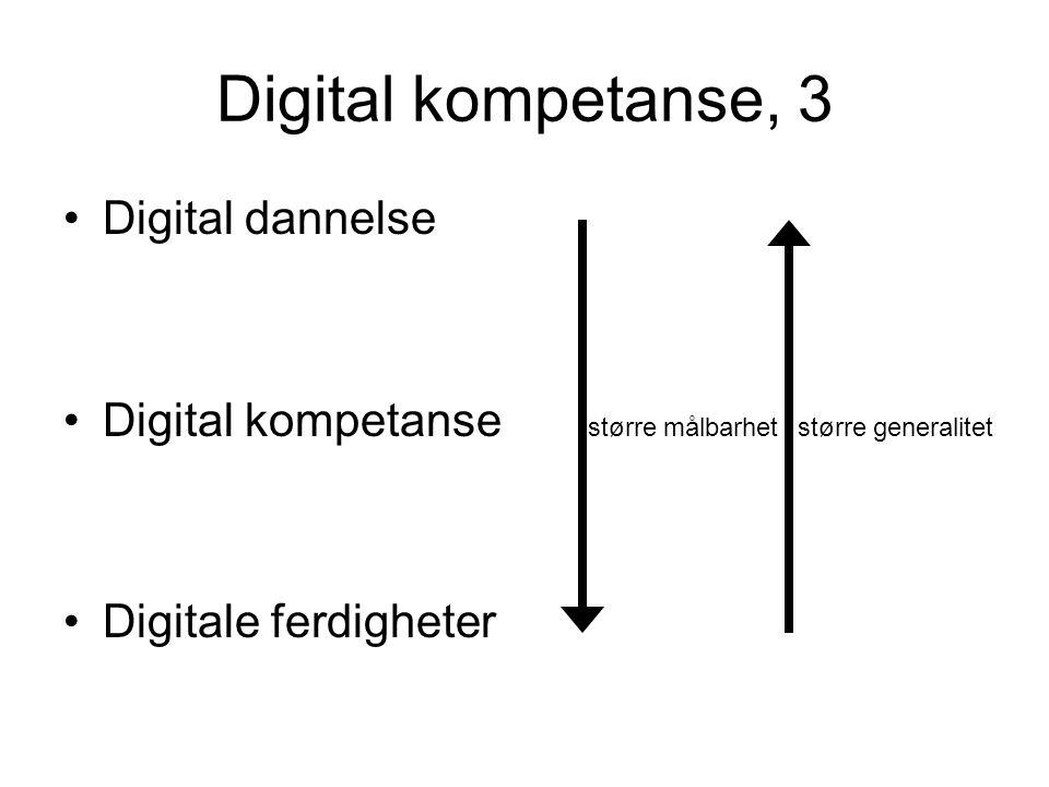 Digital kompetanse, 3 Digital dannelse