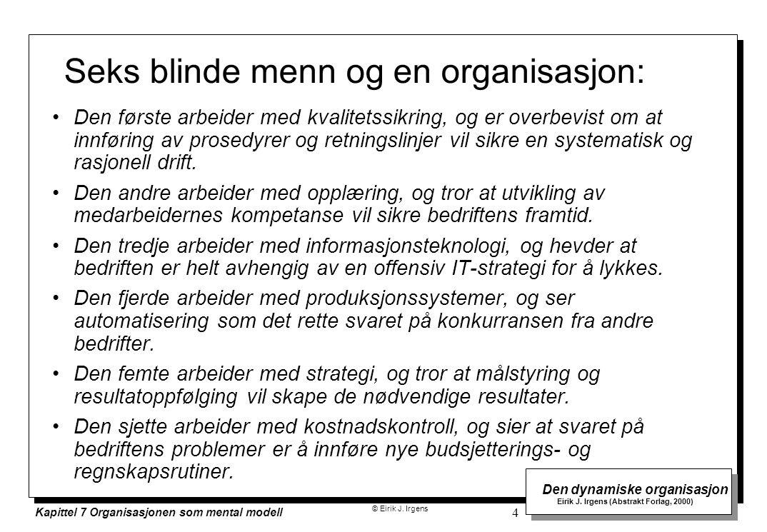 Seks blinde menn og en organisasjon: