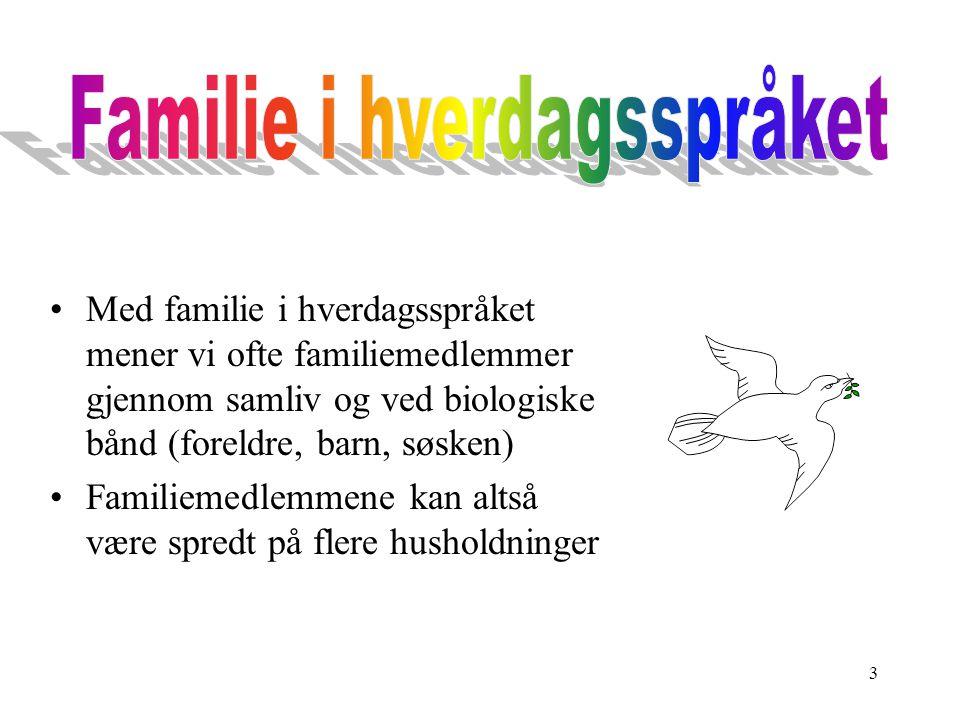 Familie i hverdagsspråket