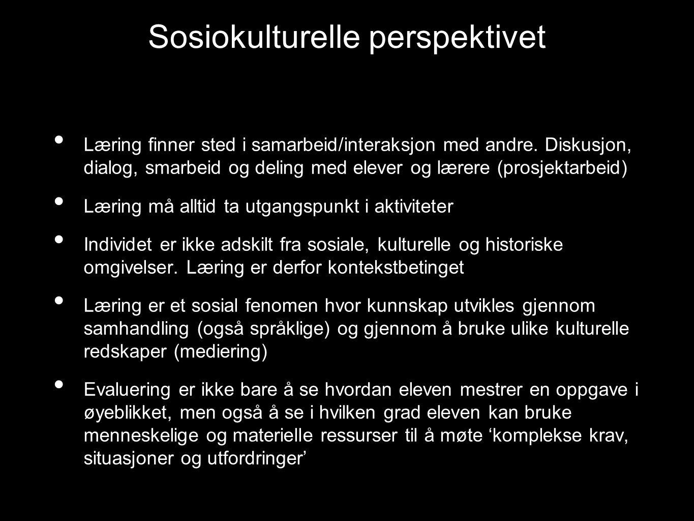 Sosiokulturelle perspektivet