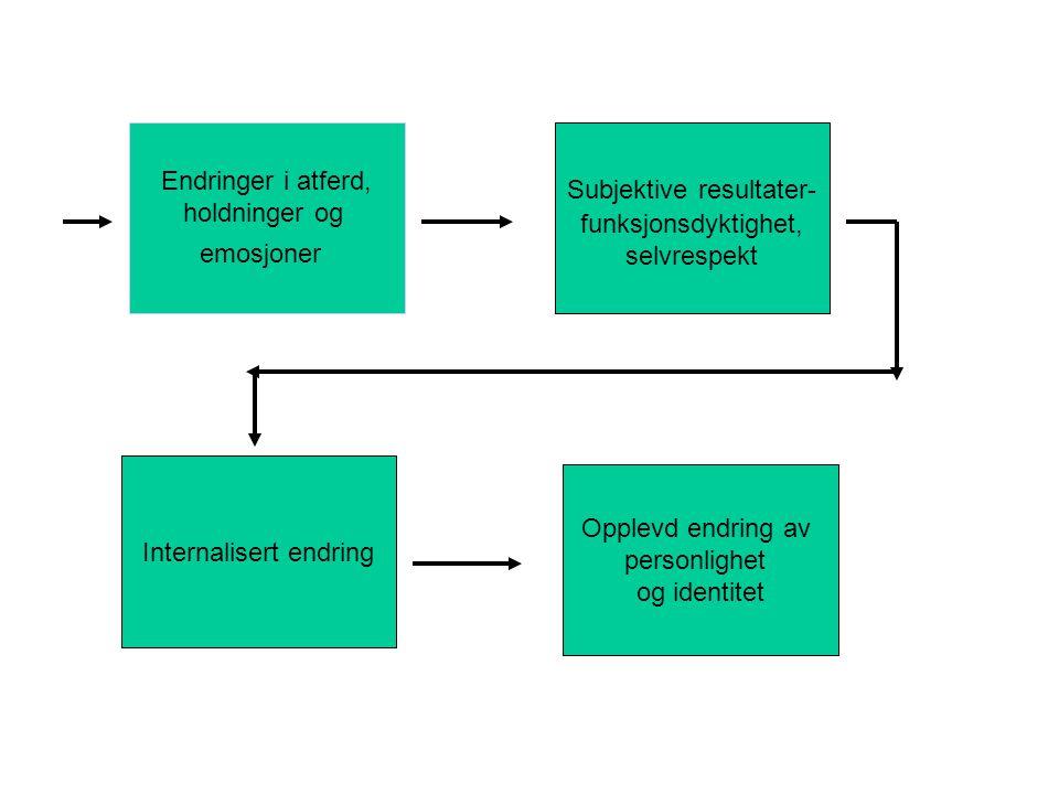 Subjektive resultater- funksjonsdyktighet, selvrespekt