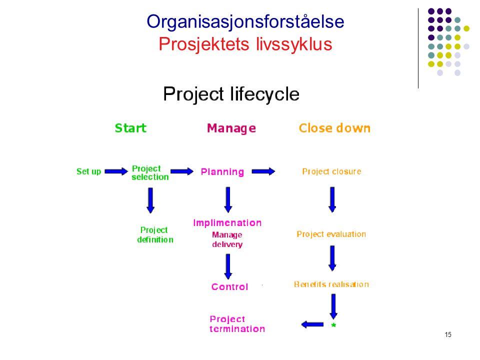 Organisasjonsforståelse Prosjektets livssyklus