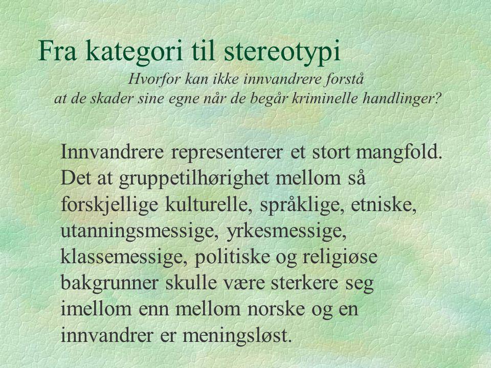 Fra kategori til stereotypi