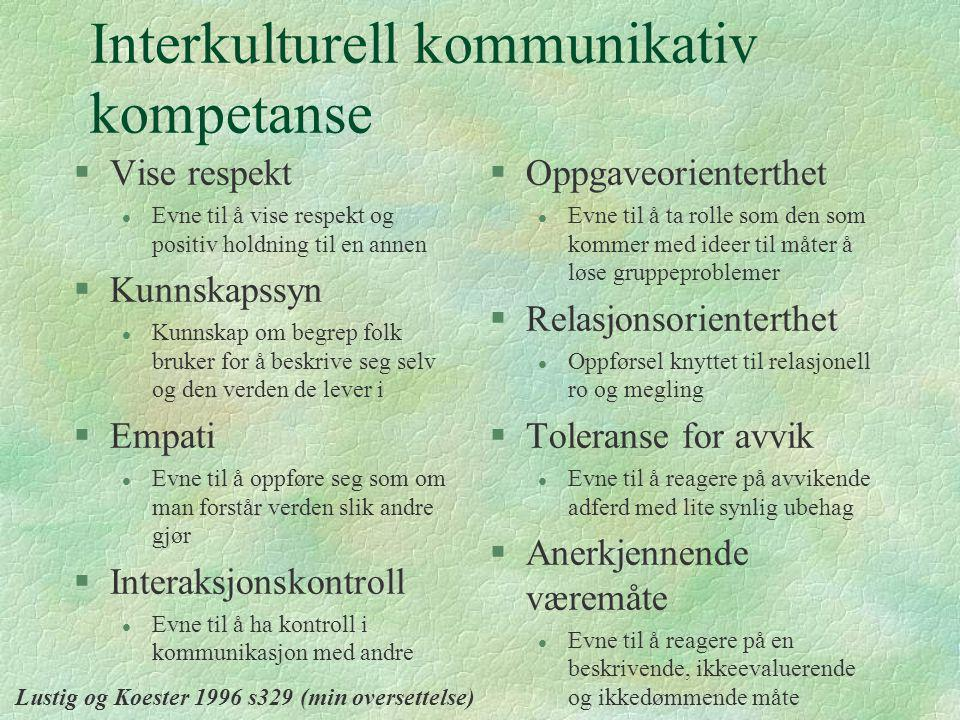 Interkulturell kommunikativ kompetanse