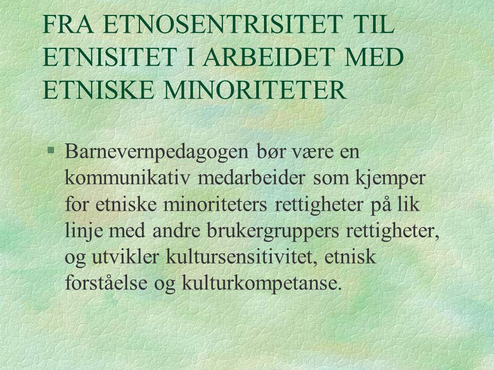 FRA ETNOSENTRISITET TIL ETNISITET I ARBEIDET MED ETNISKE MINORITETER