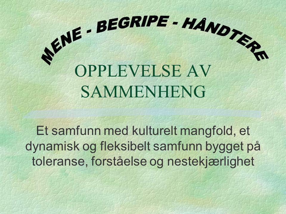 OPPLEVELSE AV SAMMENHENG