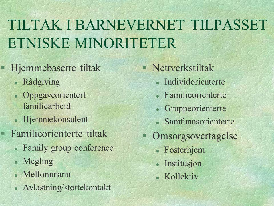 TILTAK I BARNEVERNET TILPASSET ETNISKE MINORITETER
