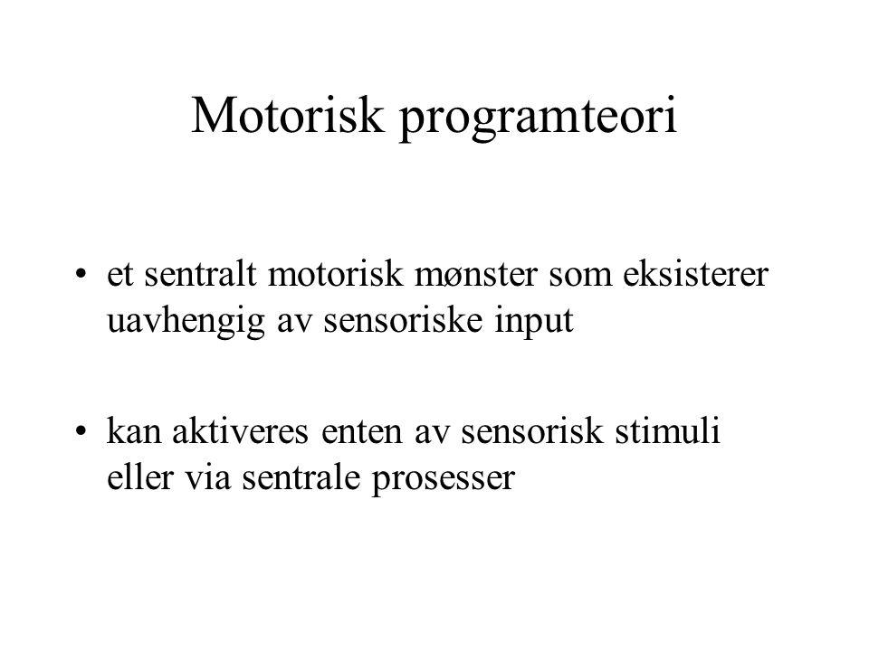 Motorisk programteori