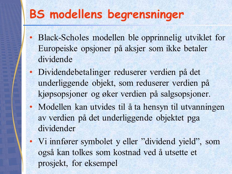 BS modellens begrensninger