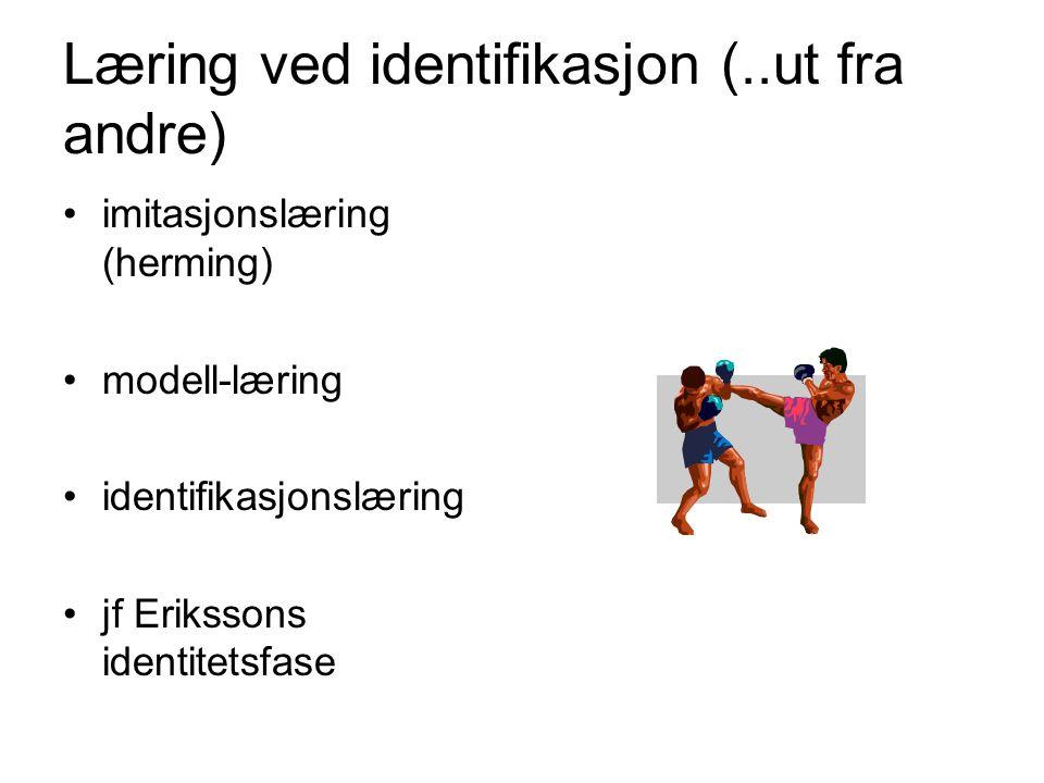 Læring ved identifikasjon (..ut fra andre)