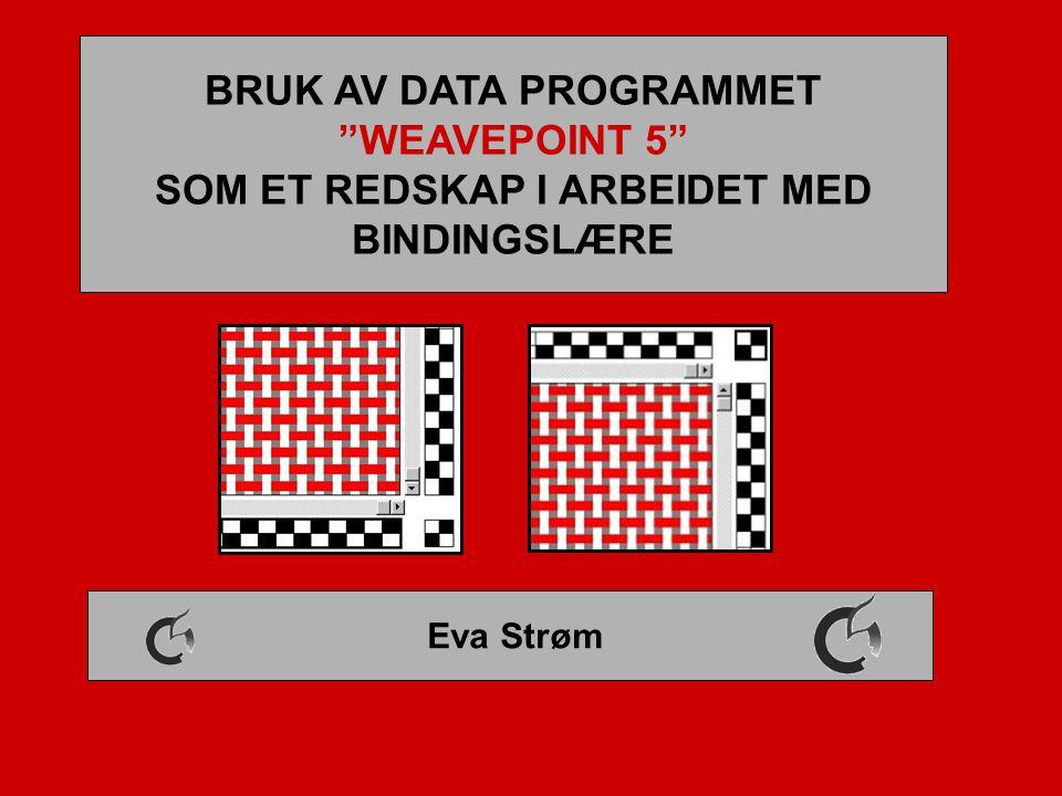 BRUK AV DATA PROGRAMMET SOM ET REDSKAP I ARBEIDET MED BINDINGSLÆRE