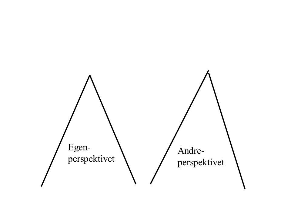 Egen-perspektivet Andre- perspektivet