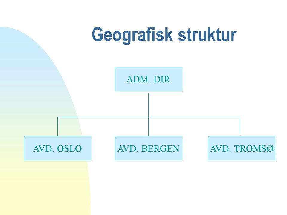 Geografisk struktur ADM. DIR AVD. OSLO AVD. BERGEN AVD. TROMSØ