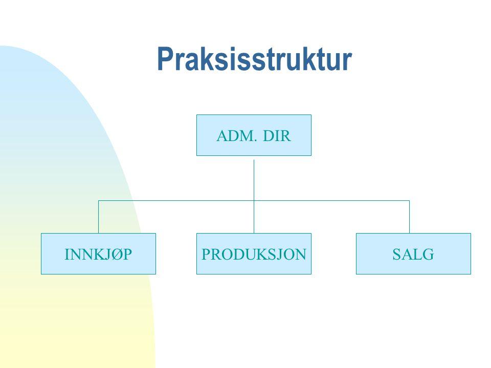 Praksisstruktur ADM. DIR INNKJØP PRODUKSJON SALG
