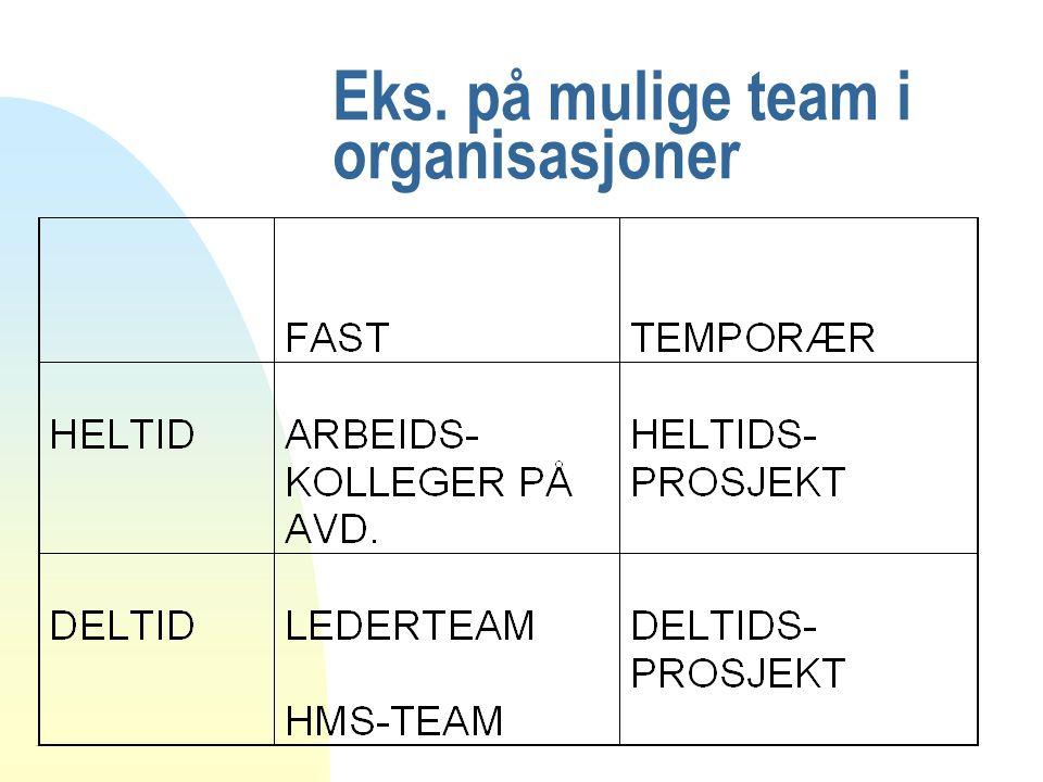 Eks. på mulige team i organisasjoner