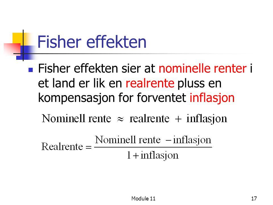 Fisher effekten Fisher effekten sier at nominelle renter i et land er lik en realrente pluss en kompensasjon for forventet inflasjon.