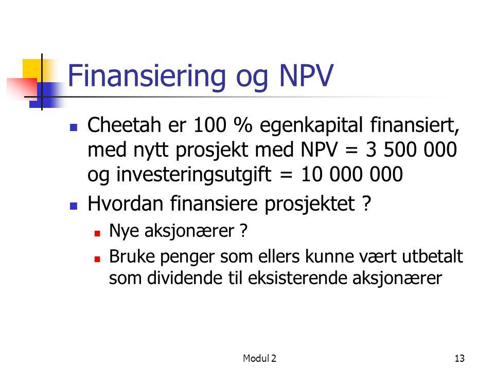 Finansiering og NPV Cheetah er 100 % egenkapital finansiert, med nytt prosjekt med NPV = 3 500 000 og investeringsutgift = 10 000 000.