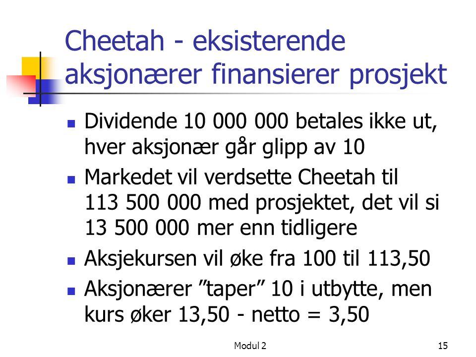 Cheetah - eksisterende aksjonærer finansierer prosjekt