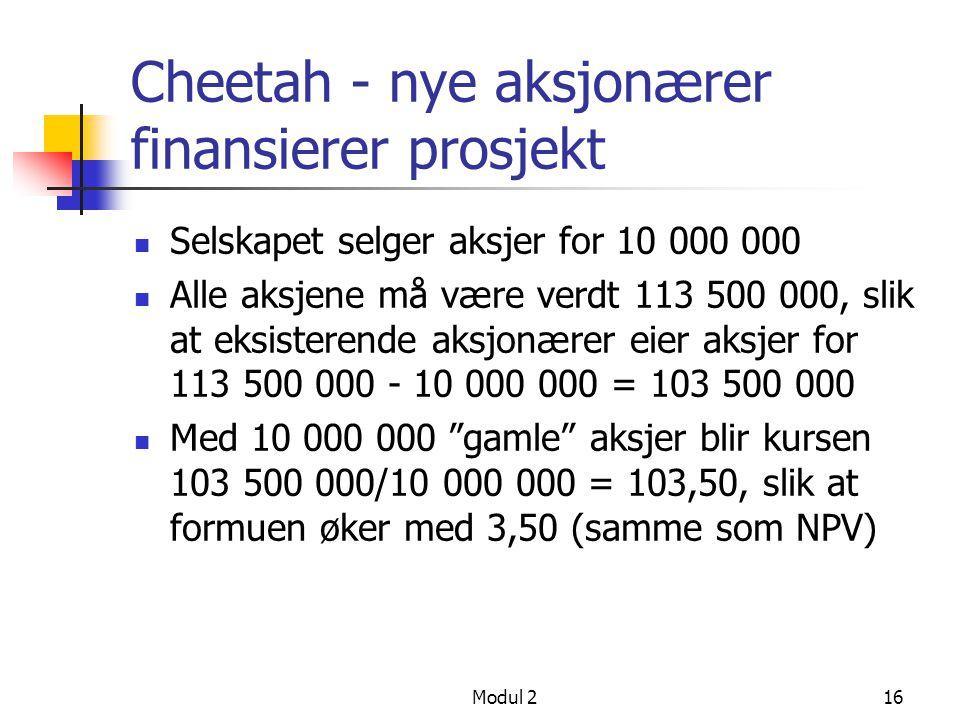 Cheetah - nye aksjonærer finansierer prosjekt