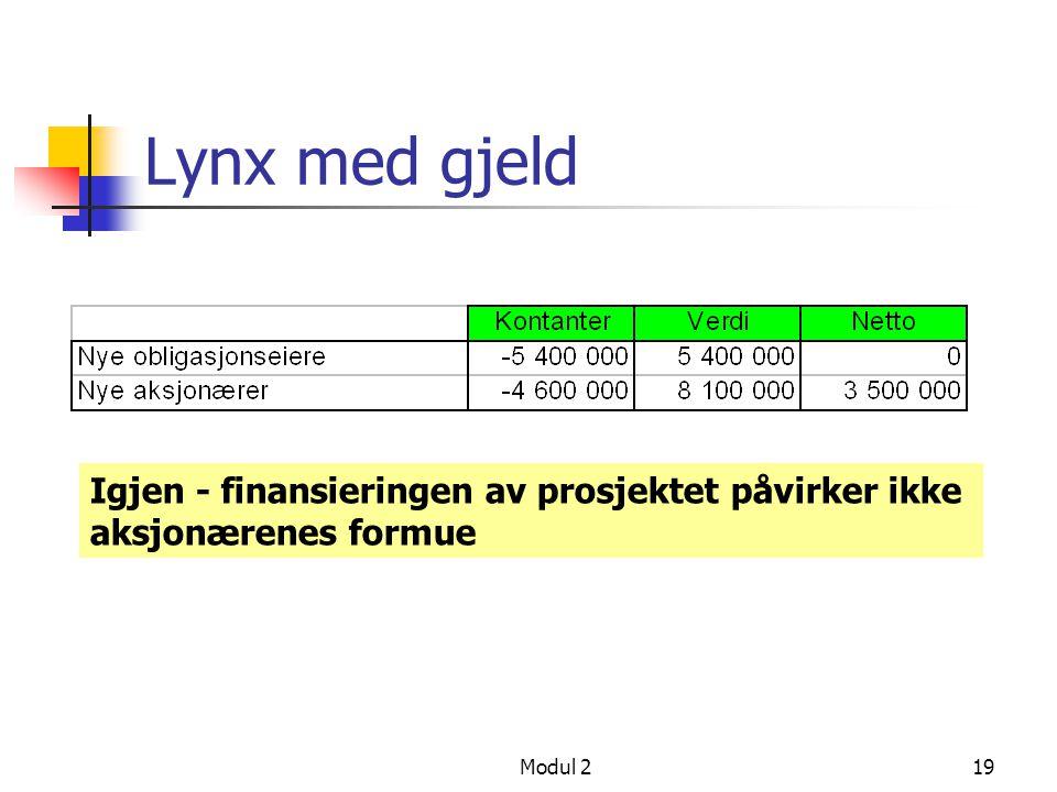 Lynx med gjeld Igjen - finansieringen av prosjektet påvirker ikke aksjonærenes formue Modul 2