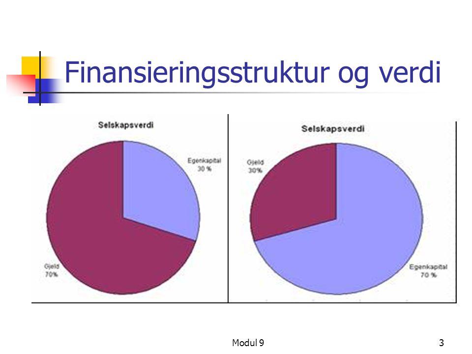 Finansieringsstruktur og verdi