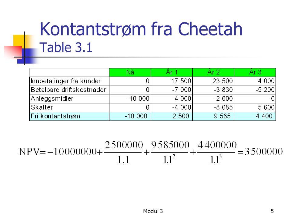 Kontantstrøm fra Cheetah Table 3.1
