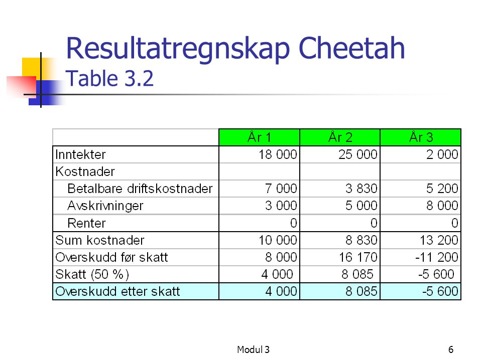 Resultatregnskap Cheetah Table 3.2