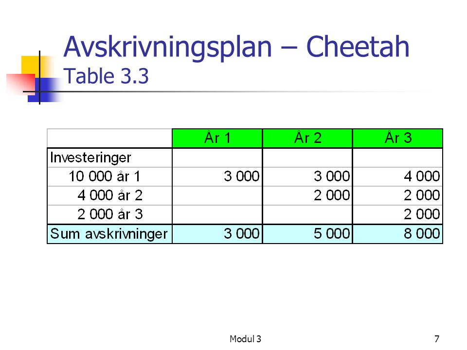 Avskrivningsplan – Cheetah Table 3.3