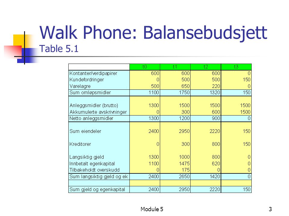 Walk Phone: Balansebudsjett Table 5.1