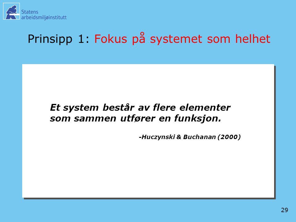 Prinsipp 1: Fokus på systemet som helhet