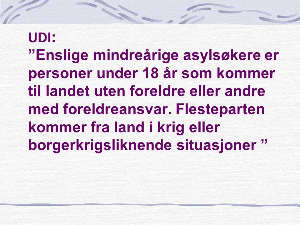 UDI: Enslige mindreårige asylsøkere er personer under 18 år som kommer til landet uten foreldre eller andre med foreldreansvar.