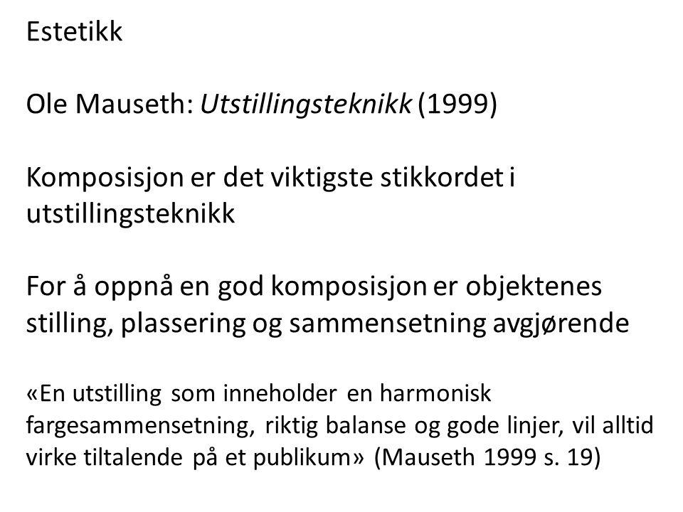 Ole Mauseth: Utstillingsteknikk (1999)