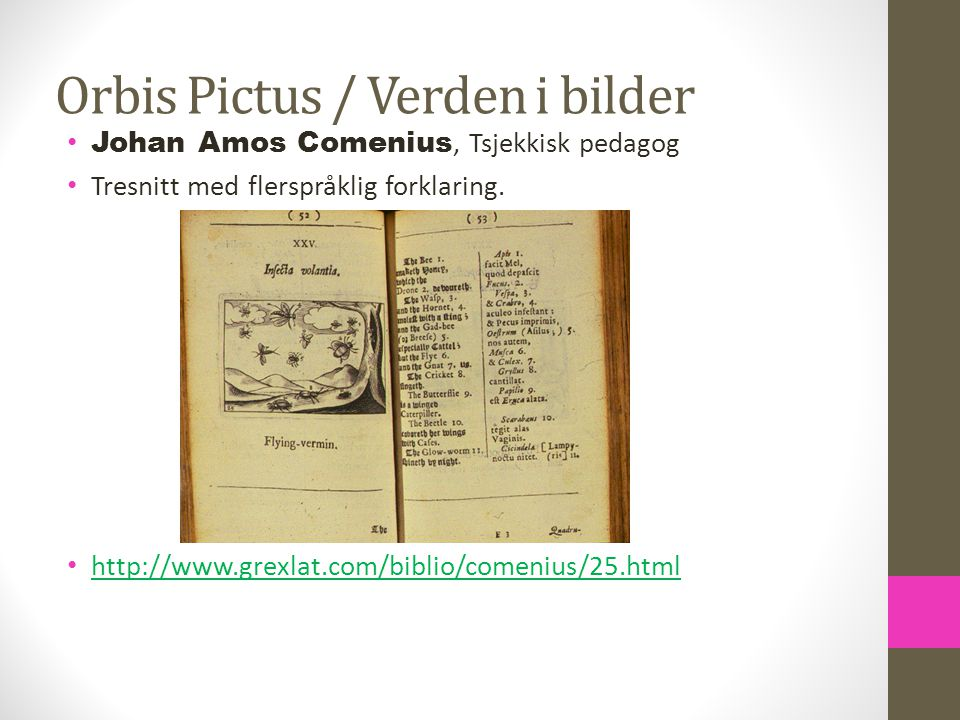 Orbis Pictus / Verden i bilder