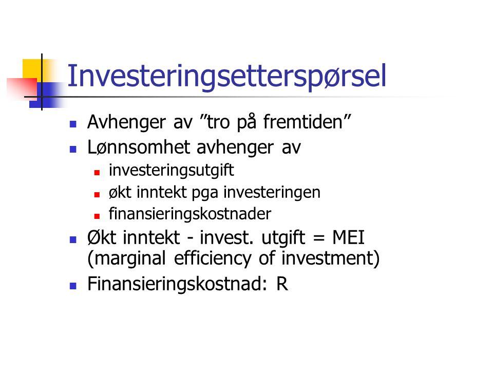 Investeringsetterspørsel