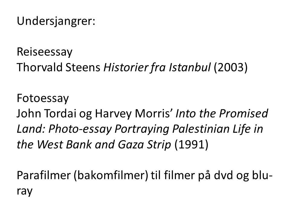 Undersjangrer: Reiseessay. Thorvald Steens Historier fra Istanbul (2003) Fotoessay.