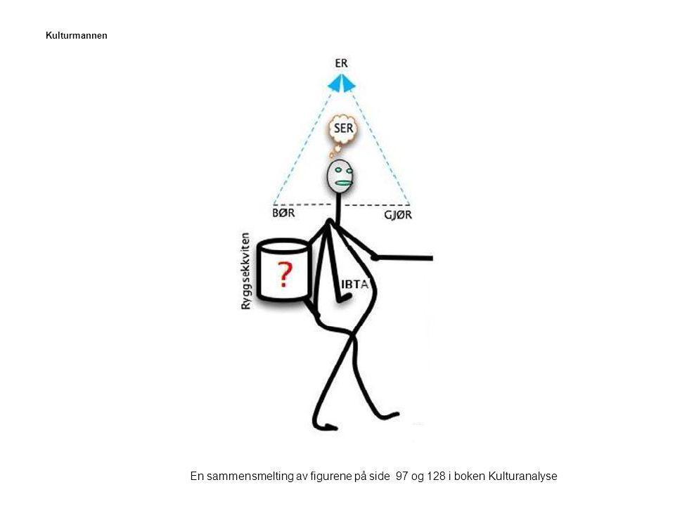En sammensmelting av figurene på side 97 og 128 i boken Kulturanalyse