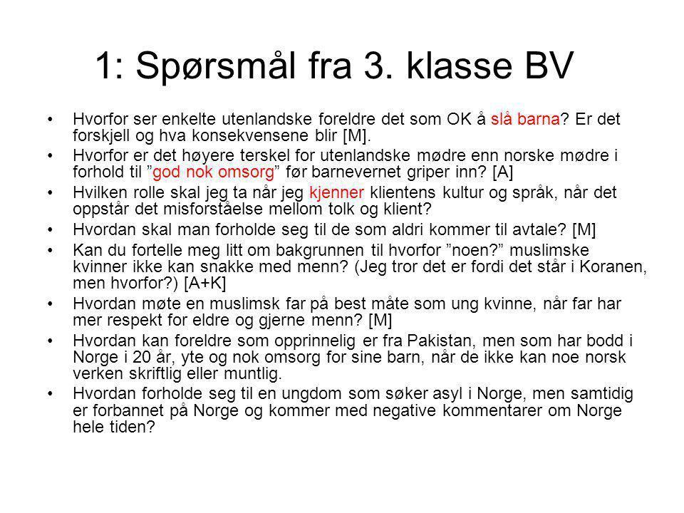 1: Spørsmål fra 3. klasse BV