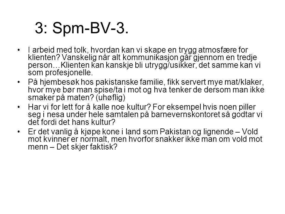 3: Spm-BV-3.