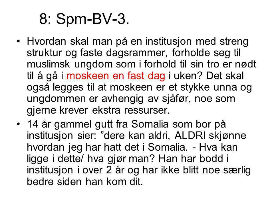 8: Spm-BV-3.