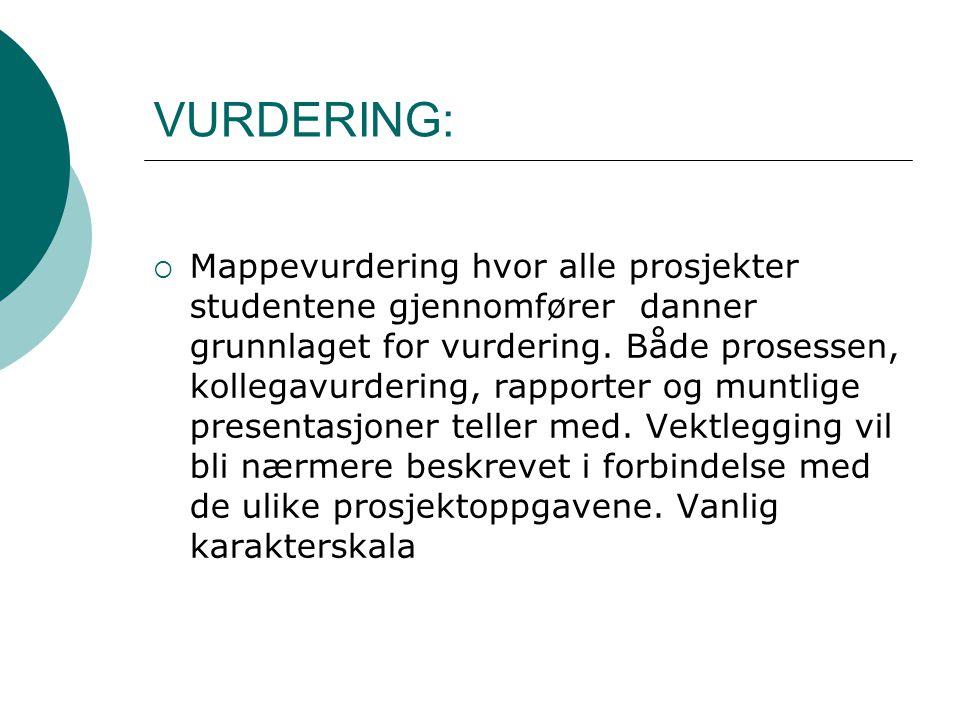 VURDERING: