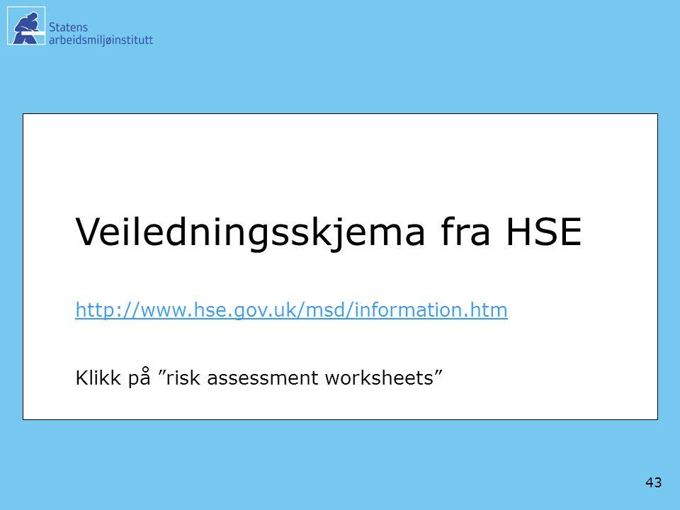 Veiledningsskjema fra HSE