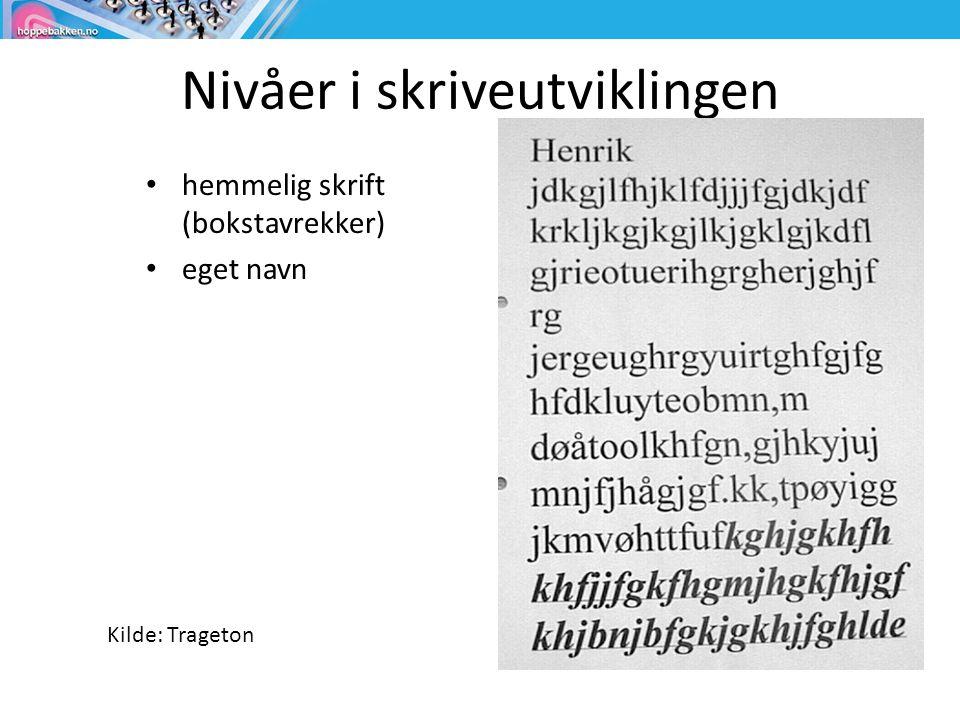 Nivåer i skriveutviklingen