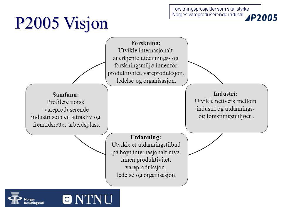 P2005 Visjon