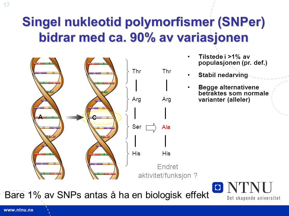 Singel nukleotid polymorfismer (SNPer) bidrar med ca